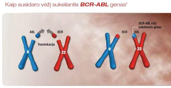 ResizedImage600310-BCR-ABL-genas